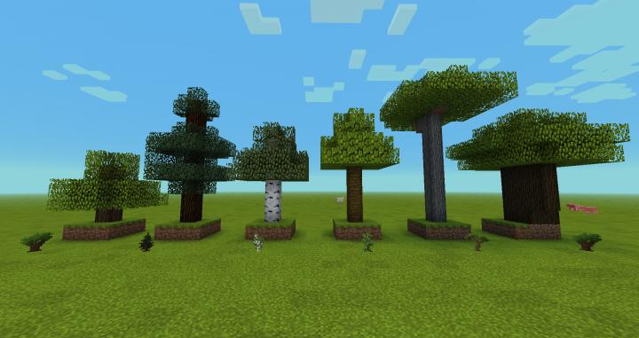 Trees  Saplings