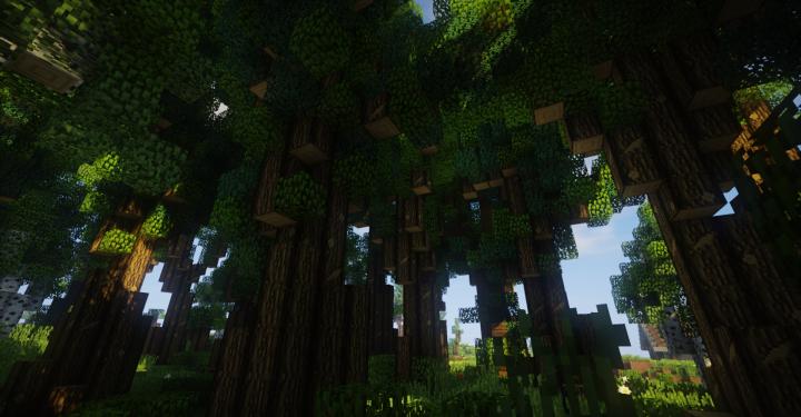 The Forest Update TFU