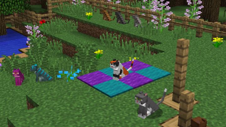 Custon cats!