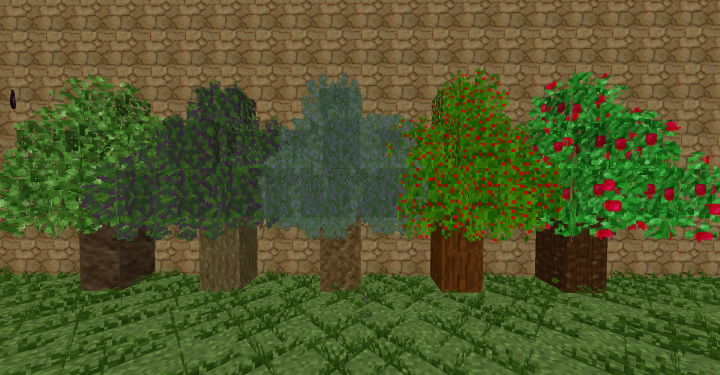 Some more trees