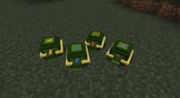 Mojang adding Turltes!!! Minecraft Blog Post