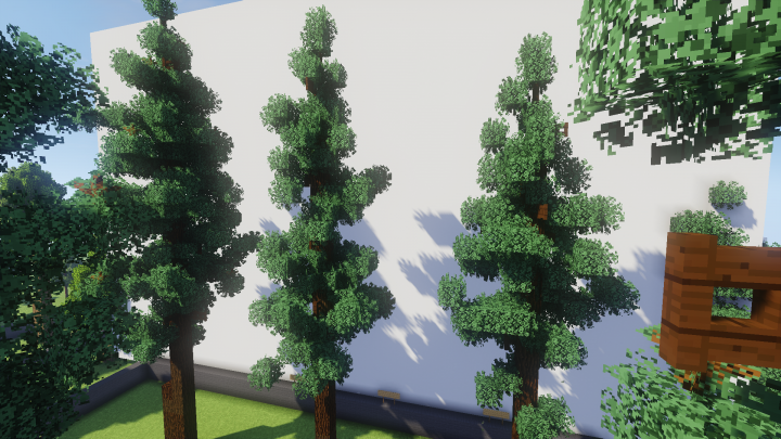New airy series Airy pine trees or connifers! Theres many more!