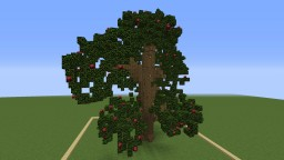 Baum Map Minecraft Map & Project