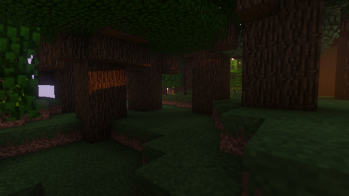 Shaders from Sildurs Vibrant Shaders