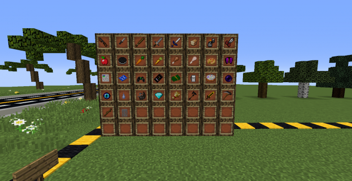 Items With Resource Pack