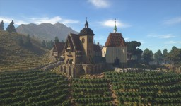 Rich Medieval Vineyard [Conquest Reforged] Minecraft