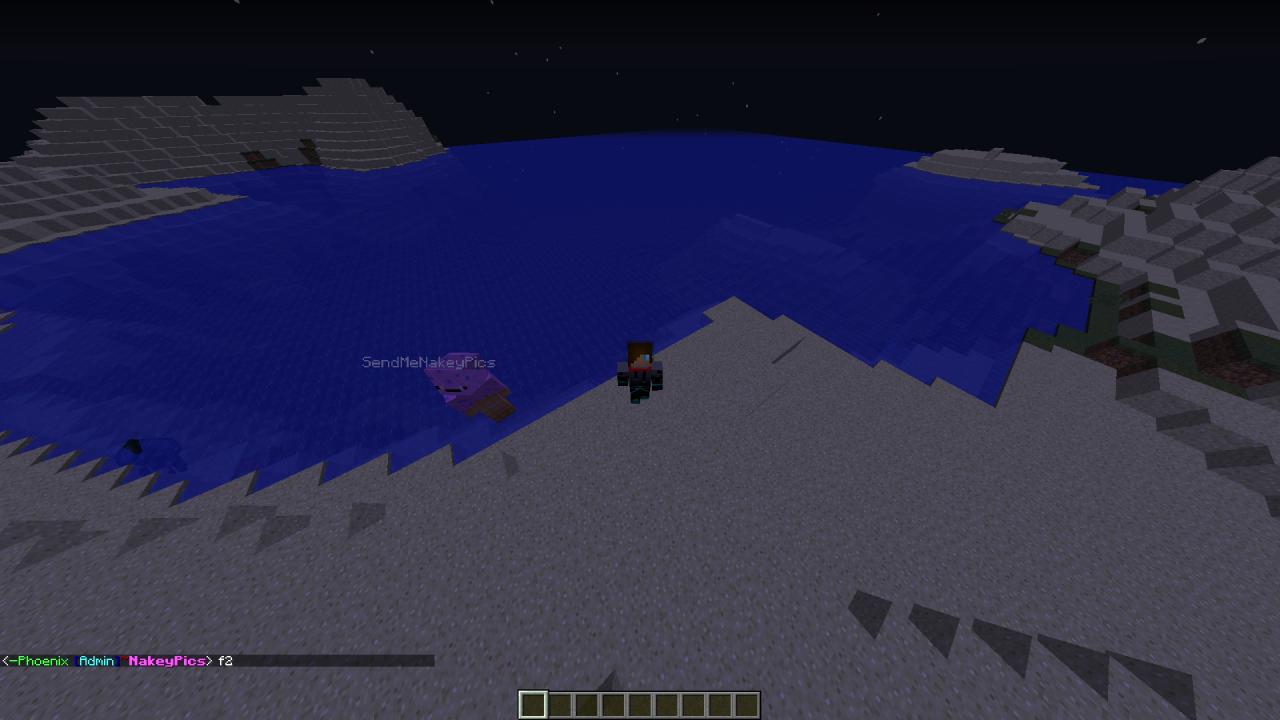 phoenix minecraft server