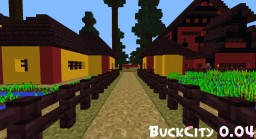 BuckCity Minecraft Map & Project