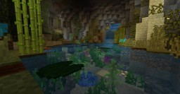 1.13 Tropical fish cave Minecraft Map & Project