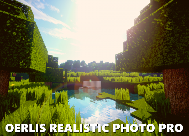 OERLIS REALISTIC PHOTO PRO by DelTaz