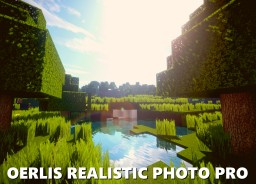 🌍 Oerlis Realistic Photo Pro by DelTaz {x128} {x256} [1.8] [1.9] [1.10] [1.11] [1.12] [1.13] (WIP) Minecraft Texture Pack