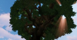 Large Tree Minecraft Map & Project