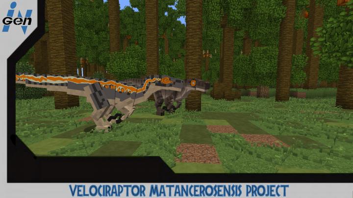 JURASSICRAFT - Velociraptor Matancerosensis skin Project