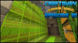 SURVIVAL LET'S PLAY / Sugarcane Farm Minecraft Map & Project