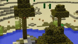 Desert Oasis Minecraft Map & Project