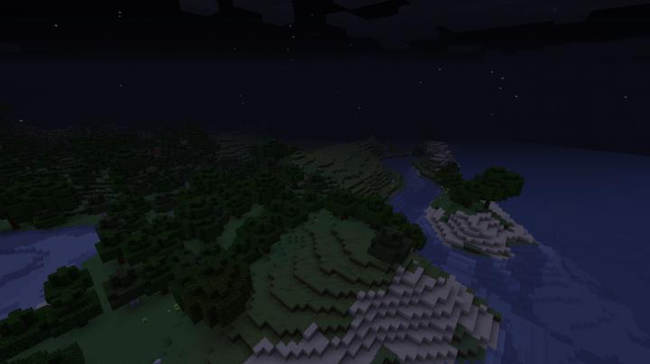Night Florest