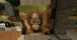 Save the Orang Utans Minecraft Map & Project