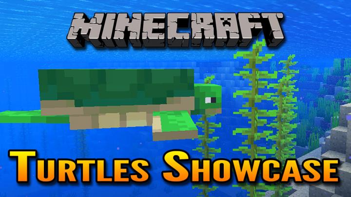 Popular Blog : Minecraft 1.13 Aquatic Update Turtles Showcase | Turtles in Minecraft !