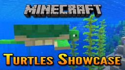 Minecraft 1.13 Aquatic Update Turtles Showcase | Turtles in Minecraft ! Minecraft