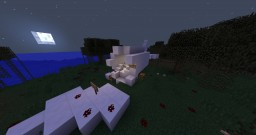 The Airplane Minecraft Map & Project