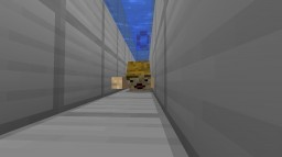 swim Minecraft Map & Project