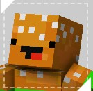 The Minecraft Mappy | Who am i? Minecraft Blog Post