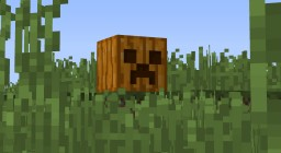 Creeper Pumpkins Minecraft Texture Pack