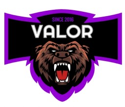 The Valor Network /| In need of staff! Minecraft Server