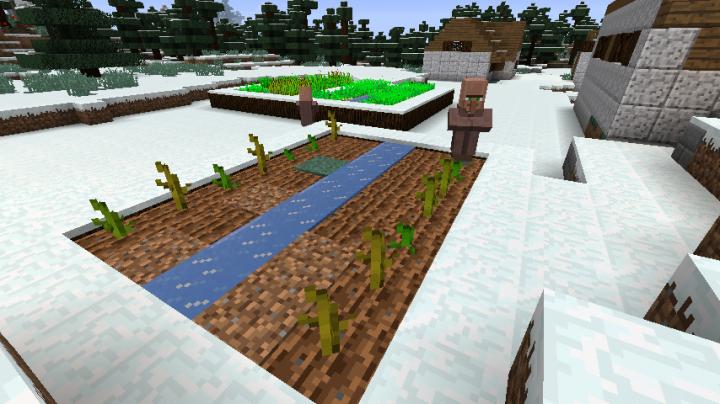 New Crops!
