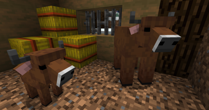 Cows that spawn in snowy biomes will look like fluffy highlanders!
