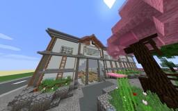 Town/School project Minecraft