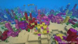 Coral Crafting [data pack] Minecraft Mod