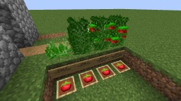 [1.14] Sweet Berries to Tomatoes Minecraft