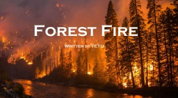 Forest Fire Minecraft Blog Post
