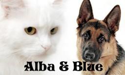 Alba & Blue Minecraft Blog