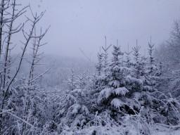 Winter (16 photos) Minecraft Blog