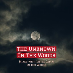 The Unknown On The Woods Minecraft Blog