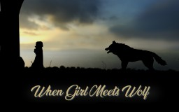 When Girl Meets Wolf Minecraft Blog