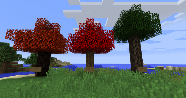 maple tree, red oak tree, and rubber tree