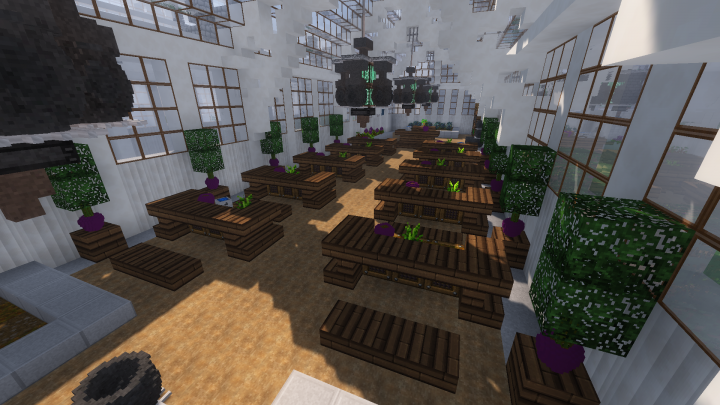 Enjoy classes straight from the books and grow your plants with our Herbology plugin