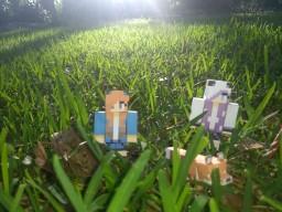 How Southdakotagirl got her name Minecraft Blog