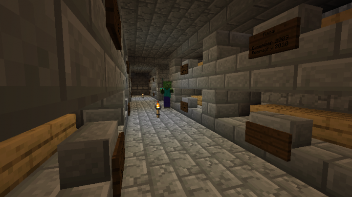 The crypt which spawns underground in some random location of your world, giving rise to the undead Litch.