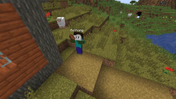 Oh no! This player was killed by a zombie... and his body has turned to a zombie itself!