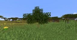 --- J𐍃 Auto Saplings --- Datapack Minecraft Data Pack