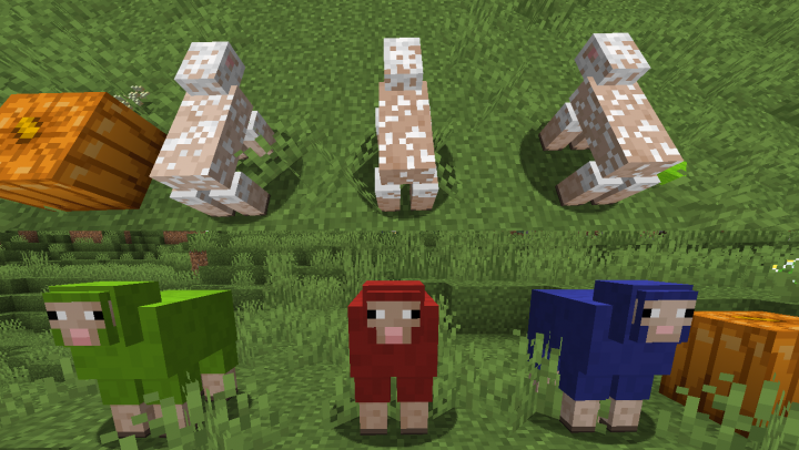Small fixes like sheared sheep having more skin visible and dyed sheep having every bit of wool colored