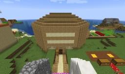 TDC's Kingdom Minecraft Map & Project