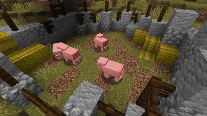 Pigs turn grass into coarse dirt!