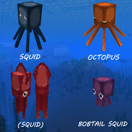 New and regular Squids spawn in rivers and upper parts of the ocean while Octopuses and Bobtail Squids spawn in lower parts.