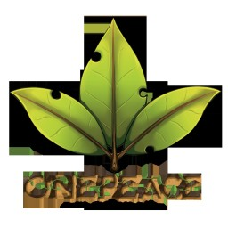 One Peace Minecraft Server