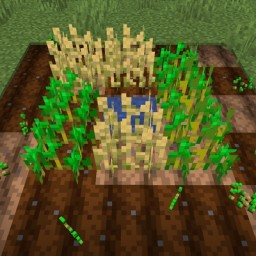 Take Root - self-planting seeds and saplings Minecraft Data Pack